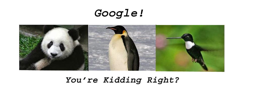 Panda Penguin Hummingbird