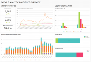 google-analytics-audience img